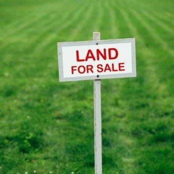 Tanah Dijual Tidak Kunjung Laku? Lakukan 5 Hal Ini!